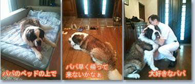 blog_001_20130808131856f8e.jpg