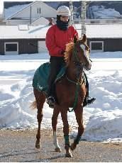 馬群を割ってオケラカイドウ!~一口馬主ライフ~-9fdedec72012111e02f4191aa48eb8d.jpg