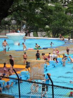 南公園 市民プール