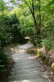 中央総合公園 健康の森