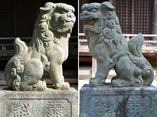 琴平神社の狛犬