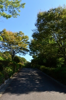 岡崎市中央総合公園