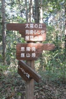 岡崎市中央総合公園 健康の森 冒険の小道