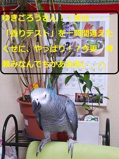 DSC_2375.jpg