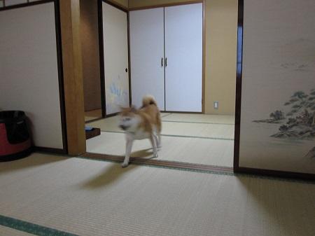 赤湯温泉0901_7