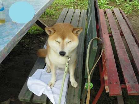 赤湯温泉0902_14