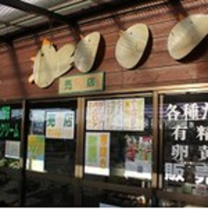 miyazaki kirishima gaikan