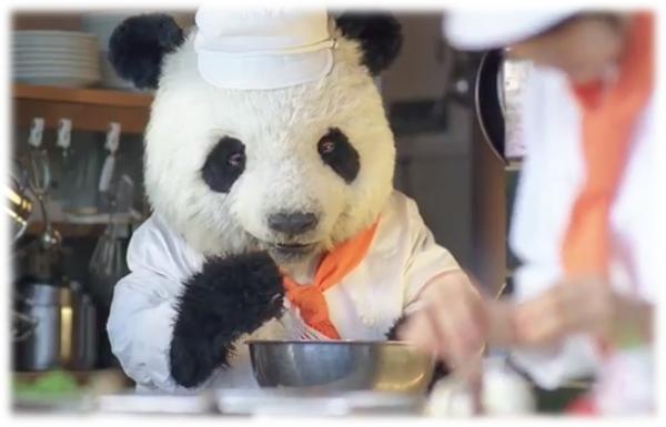 panda16.png