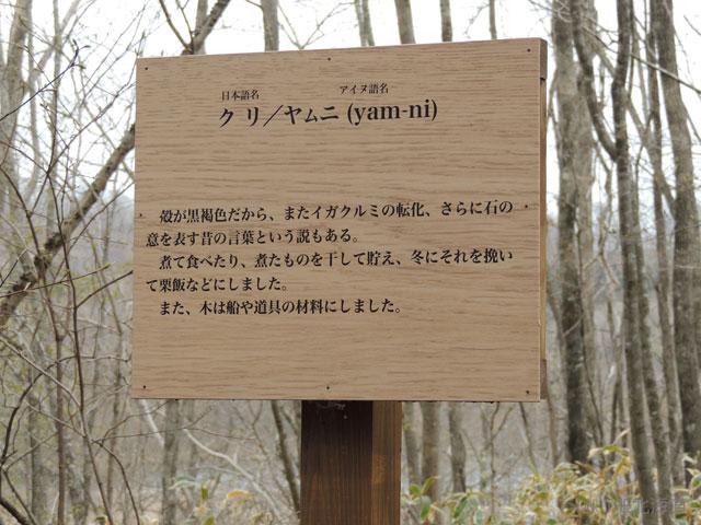 20130518-(28).jpg