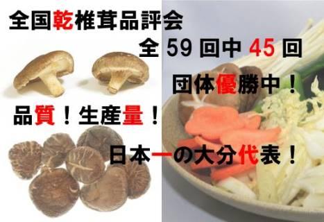 大分が日本一!「乾し椎茸」