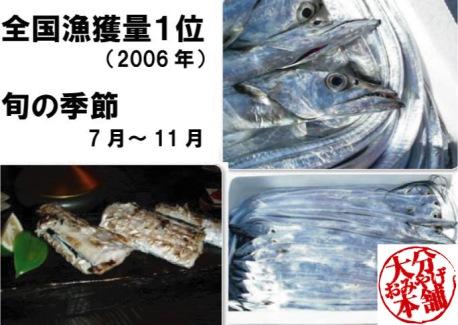 大分が日本一「太刀魚」