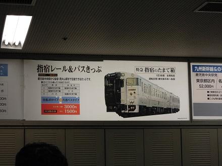 DSCN5092.jpg
