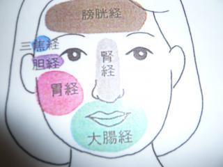 カラーオーリング 顔と内臓