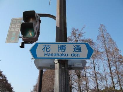 hanahakudoriDCIM0311.jpg