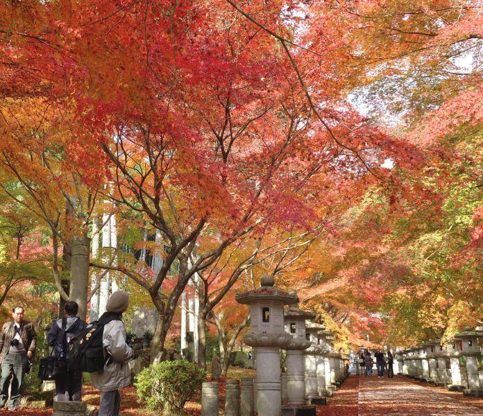 2013-1122kousanji.jpg