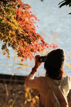 15 昭和記念公園
