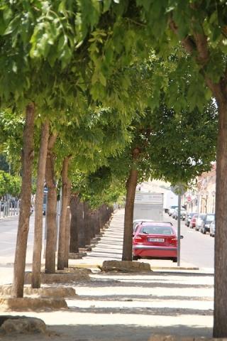 サンティポンセの街の様子 11