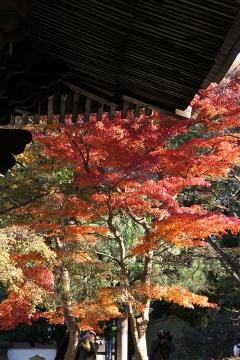 13 円覚寺