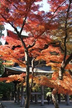 12 円覚寺