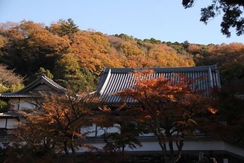 52 円覚寺
