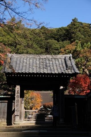 96 円覚寺