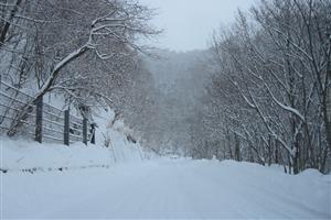 winterawd_s0.jpg