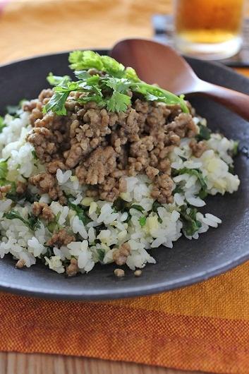 ひき肉のせ豆パクチーごはん2