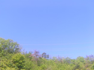 2013_05_03_多治見・瀬戸_068