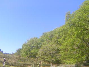 2013_05_03_多治見・瀬戸_081