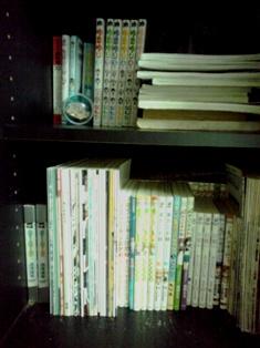2013_06_02_奈良公園・日本橋_117 - コピー