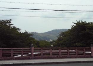 2013_06_02_奈良公園・日本橋_030