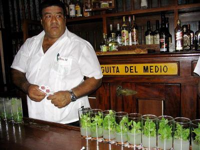 800px-Bodeguita_del_Medio,_Havana,_Cuba_6