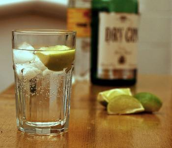 700px-Gin_and_Tonic_with_ingredients.jpg