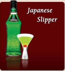 japaneseslipper.jpg