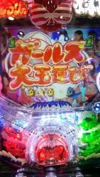 DSC_0245_20141118205415751.jpg
