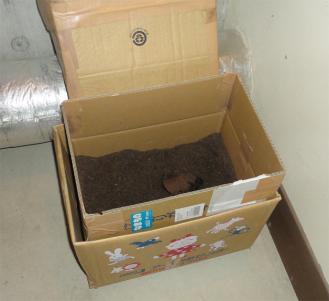 201308 新しい堆肥化用ダン箱