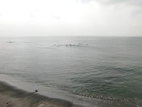 shonan surf