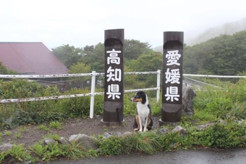 四国カルスト 天狗高原9