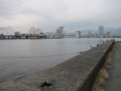 1311清水港