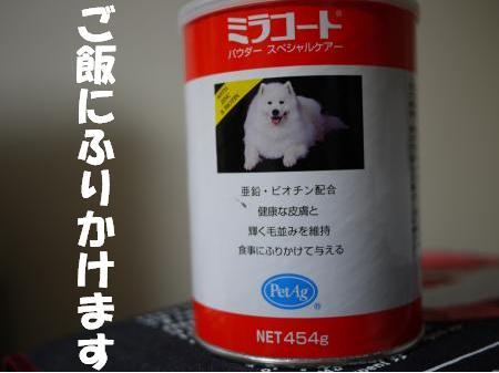 25052307.jpg