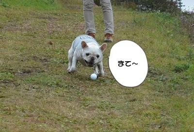 DSC_3093.jpg