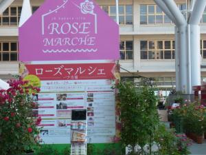 rosegarden-2.jpg