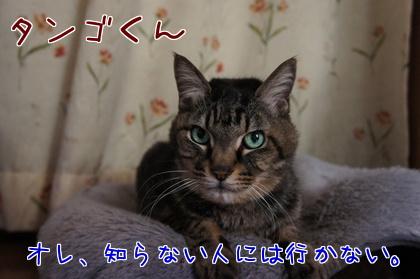 2014-01-6-2.jpg