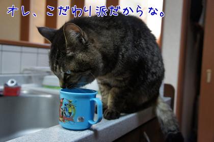 2014-01-6-4.jpg