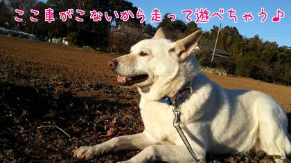 2014-01-8-2.jpg