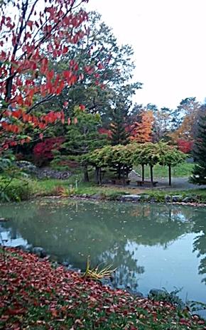 141021_1340~02中島公園4-4