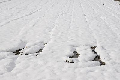 県北・雪 1