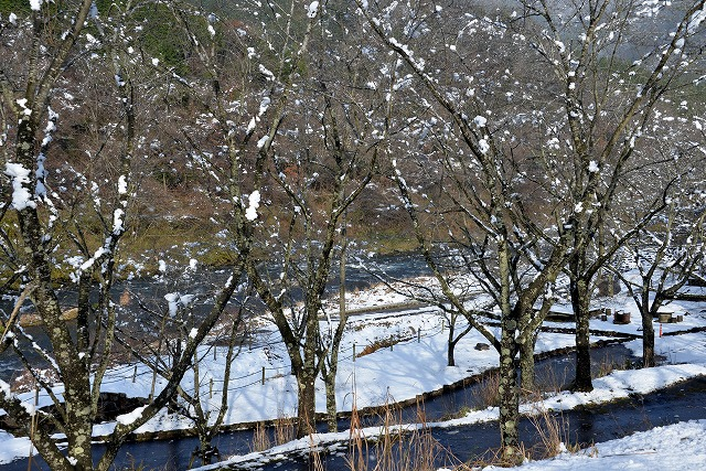 県北・雪2