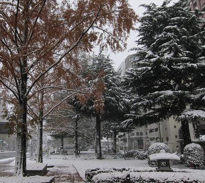 広島の雪 3