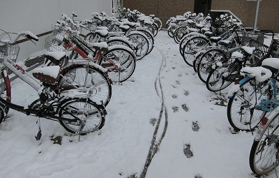 広島の雪5